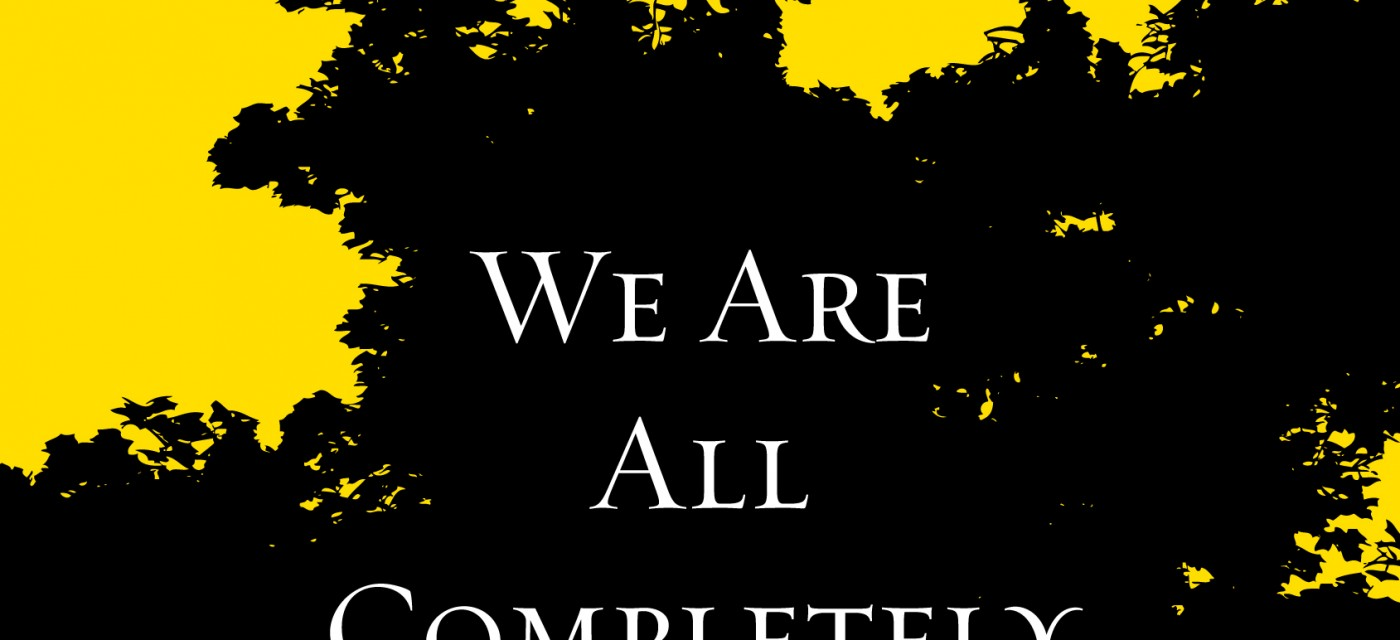 we are all completely beside ourselves pdf